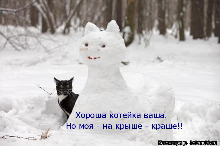 Котоматрица: Хороша котейка ваша. Но моя - на крыше - краше!!