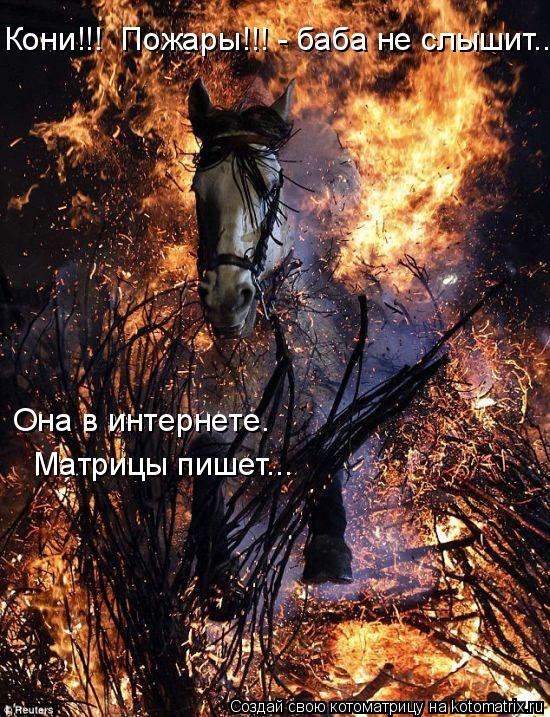Котоматрица: Кони!!!  Пожары!!! - баба не слышит... Она в интернете. Матрицы пишет...