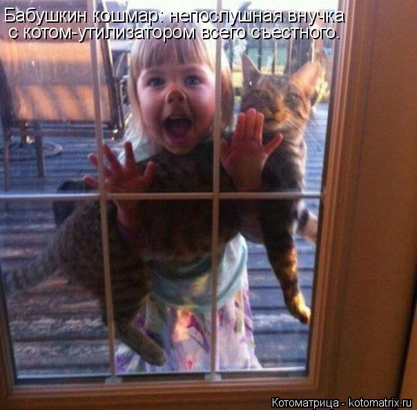 Котоматрица: Бабушкин кошмар: непослушная внучка   с котом-утилизатором всего съестного.