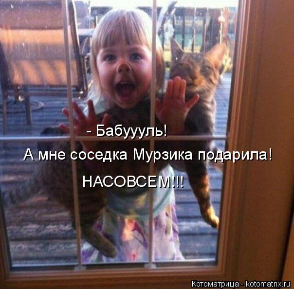Котоматрица: - Бабуууль!  А мне соседка Мурзика подарила!  НАСОВСЕМ!!!