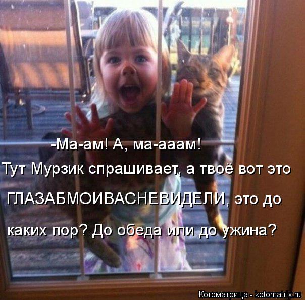 Котоматрица: -Ма-ам! А, ма-ааам! Тут Мурзик спрашивает, а твоё вот это ГЛАЗАБМОИВАСНЕВИДЕЛИ, это до каких пор? До обеда или до ужина?