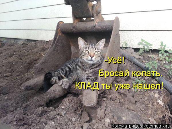 Котоматрица: -Усё!  КЛАД ты уже нашел! Бросай копать.