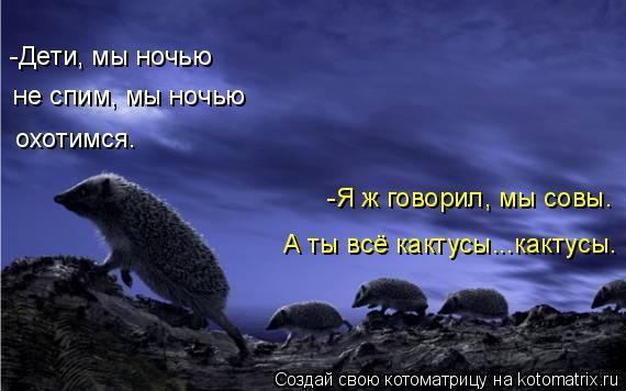 Котоматрица: -Дети, мы ночью  не спим, мы ночью охотимся. -Я ж говорил, мы совы. А ты всё кактусы...кактусы.