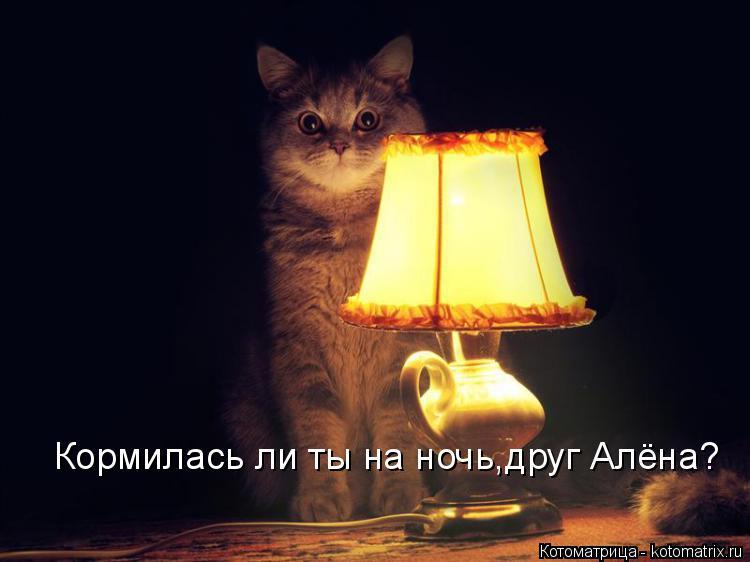 Котоматрица: Кормилась ли ты на ночь,друг Алёна?