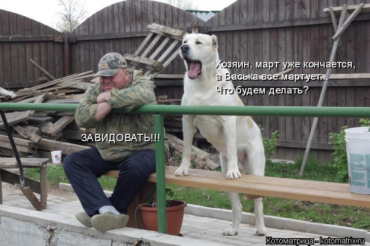 Котоматрица: Хозяин, март уже кончается,  а Васька все мартует... Что будем делать? ЗАВИДОВАТЬ!!!