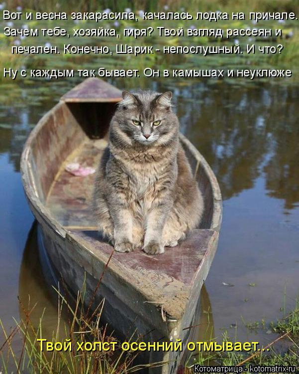 Котоматрица: Вот и весна закарасила, качалась лодка на причале. Зачем тебе, хозяйка, гиря? Твой взгляд рассеян и печален. Конечно, Шарик - непослушный. И чт