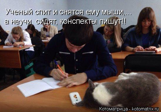 Котоматрица: Ученый спит и снятся ему мыши,... а неучи  сидят, конспекты пишут!!