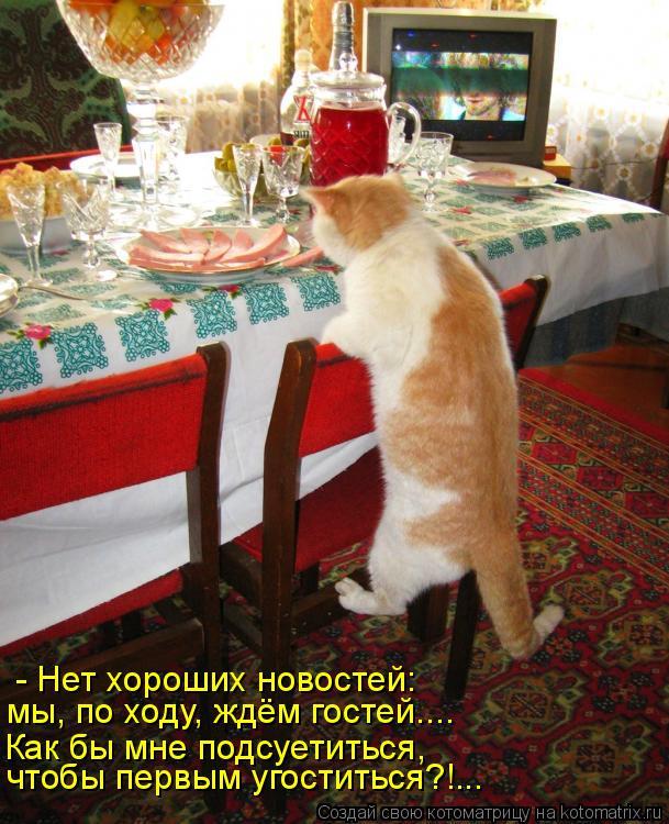 Котоматрица: - Нет хороших новостей: мы, по ходу, ждём гостей.... Как бы мне подсуетиться, чтобы первым угоститься?!...