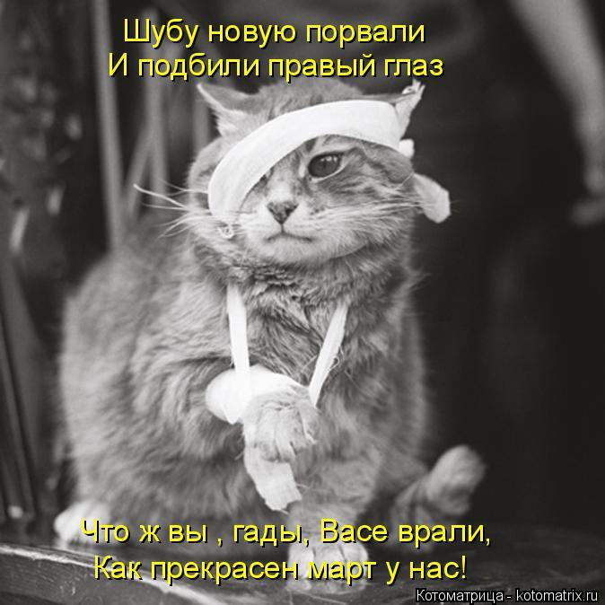 Котоматрица: Шубу новую порвали И подбили правый глаз Что ж вы , гады, Васе врали, Как прекрасен март у нас!
