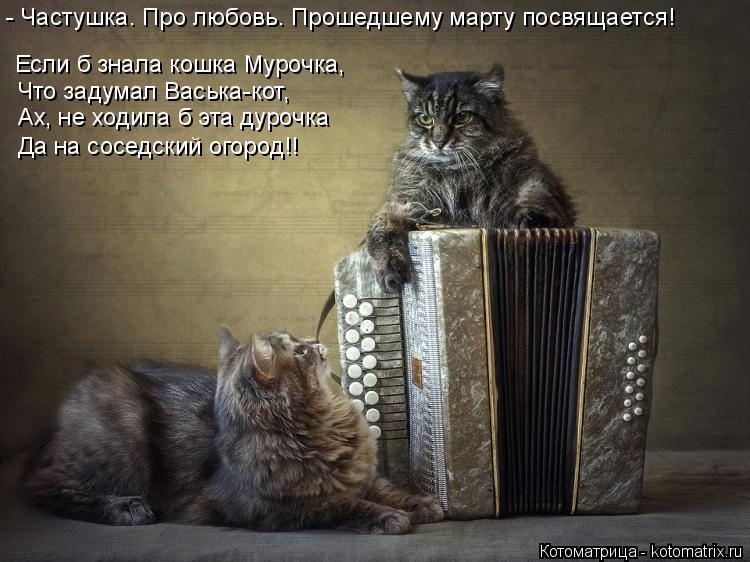 Котоматрица: - Частушка. Про любовь. Прошедшему марту посвящается! Если б знала кошка Мурочка, Что задумал Васька-кот, Ах, не ходила б эта дурочка Да на сос