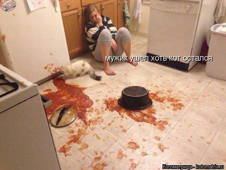 Котоматрица: мужик ушел хоть кот остался