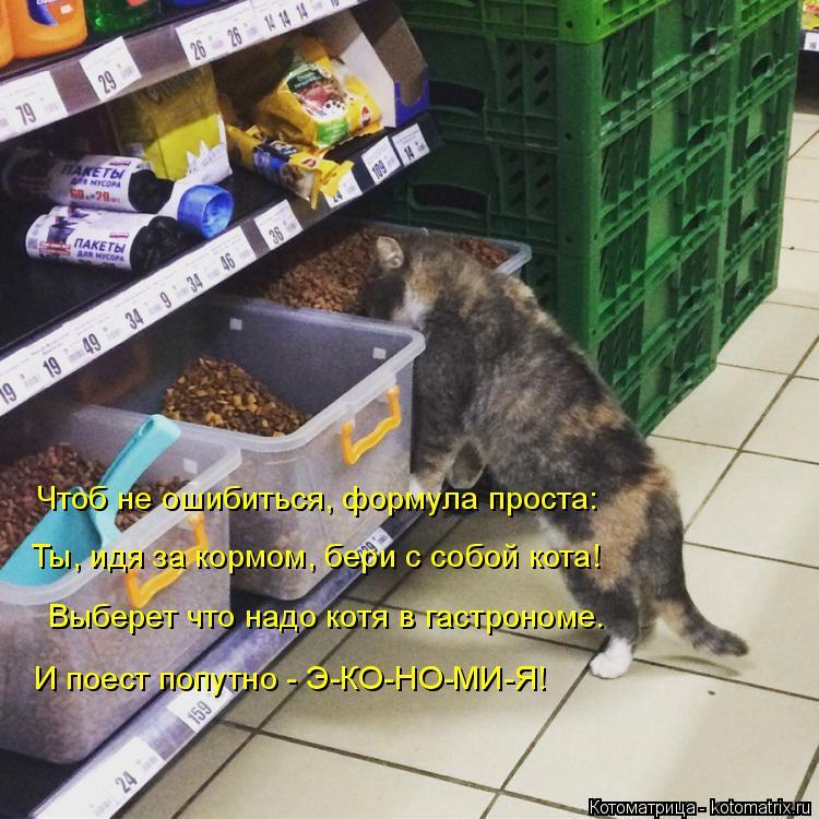 Котоматрица: Чтоб не ошибиться, формула проста: Ты, идя за кормом, бери с собой кота! Выберет что надо котя в гастрономе. И поест попутно - Э-КО-НО-МИ-Я!