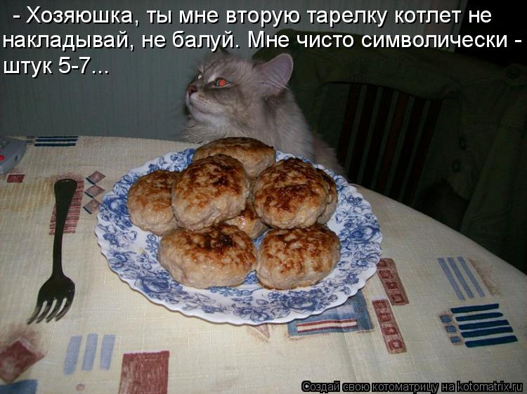 Котоматрица: - Хозяюшка, ты мне вторую тарелку котлет не  накладывай, не балуй. Мне чисто символически - штук 5-7...
