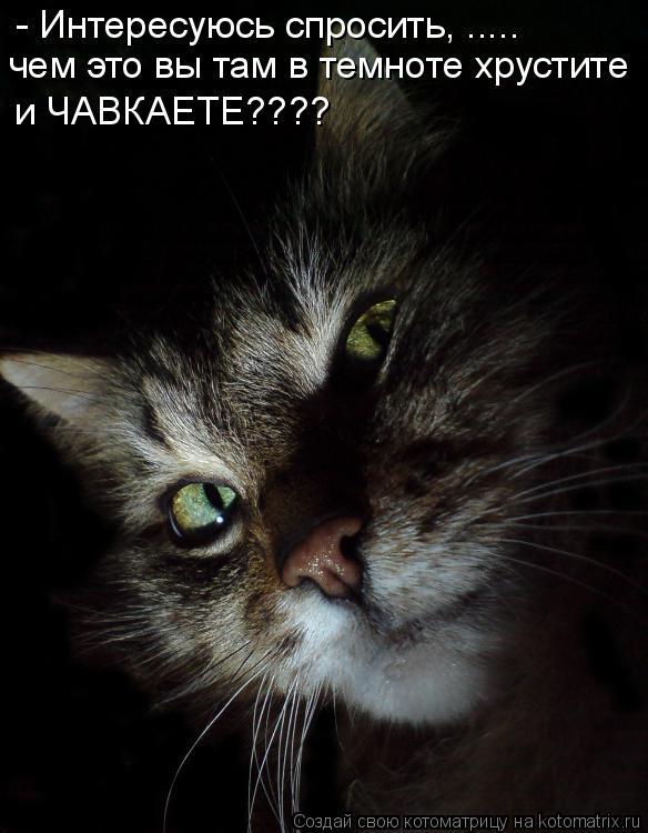 Котоматрица: - Интересуюсь спросить, ..... чем это вы там в темноте хрустите   и ЧАВКАЕТЕ????