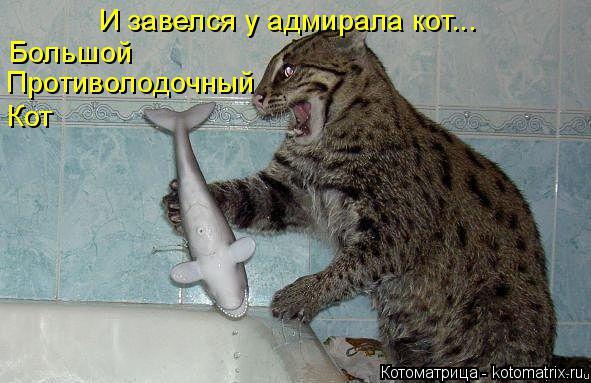Котоматрица: И завелся у адмирала кот... Большой Противолодочный Кот