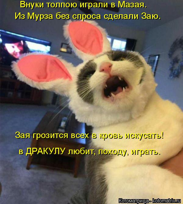 http://kotomatrix.ru/images/lolz/2017/04/20/kotomatritsa_QM.jpg