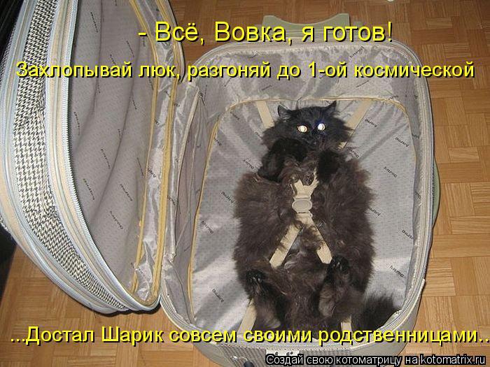 Котоматрица: - Всё, Вовка, я готов! ...Достал Шарик совсем своими родственницами...  Захлопывай люк, разгоняй до 1-ой космической