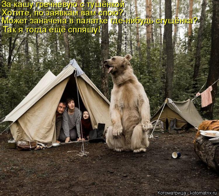 Котоматрица: За кашу гречневую с тушёнкой Хотите, по заявкам вам спою?   Может заначена в палатке где-нибудь сгущёнка? Так я тогда ещё спляшу!