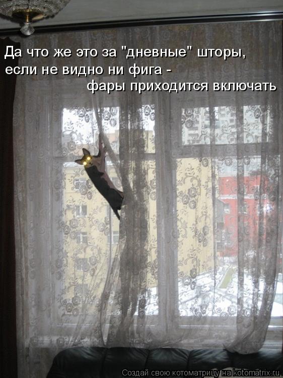 """Котоматрица: Да что же это за """"дневные"""" шторы,  если не видно ни фига -  фары приходится включать"""
