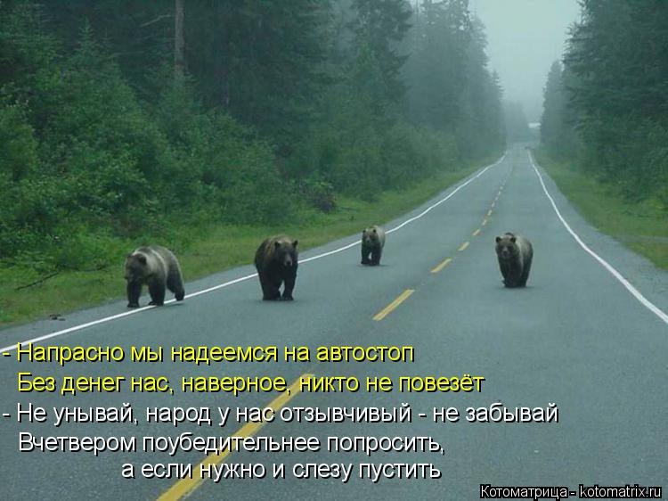 Котоматрица: - Напрасно мы надеемся на автостоп   Без денег нас, наверное, никто не повезёт  - Не унывай, народ у нас отзывчивый - не забывай  Вчетвером поуб