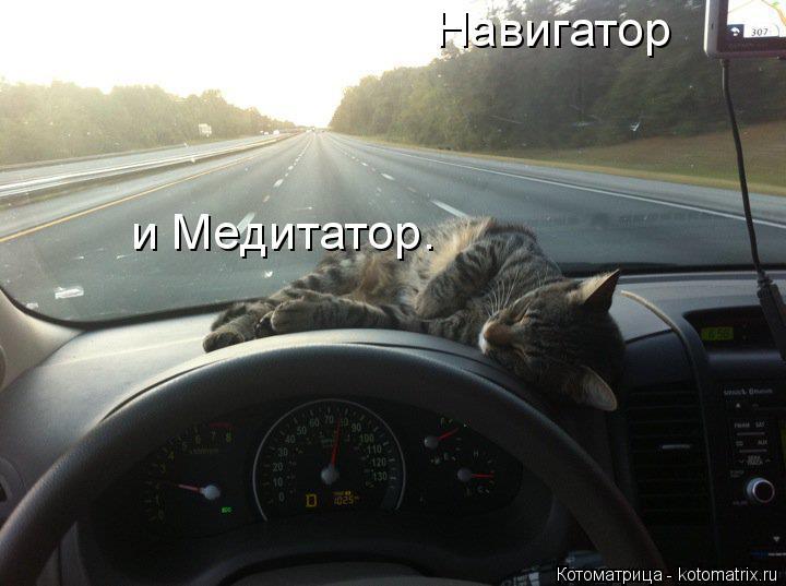 Котоматрица: Навигатор и Медитатор.