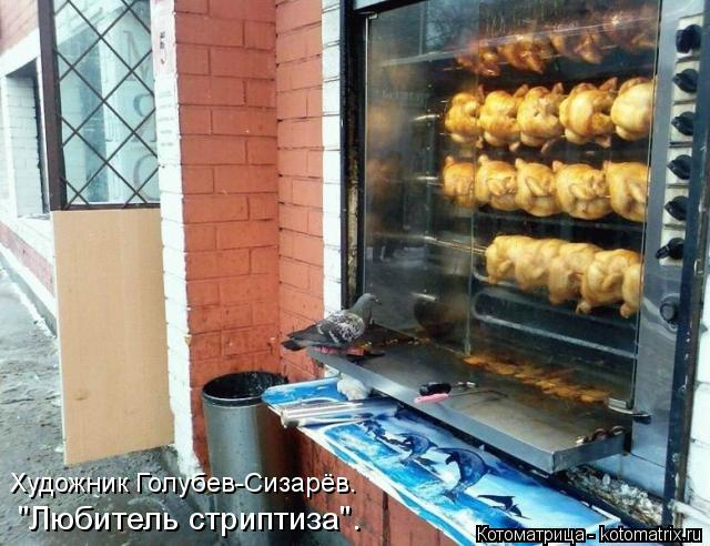 """Котоматрица: """"Любитель стриптиза"""". Художник Голубев-Сизарёв."""