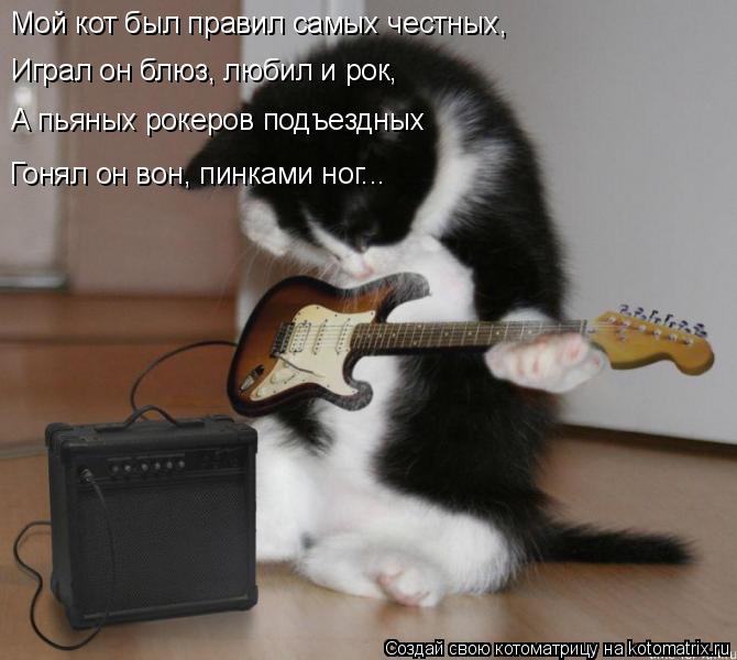 Котоматрица: Мой кот был правил самых честных, Играл он блюз, любил и рок, А пьяных рокеров подъездных Гонял он вон, пинками ног...