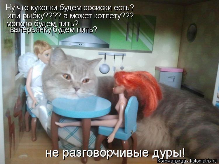 Котоматрица: Ну что куколки будем сосиски есть? или рыбку???? а может котлету??? молоко будем пить? валерьянку будем пить? не разговорчивые дуры!