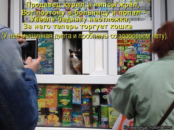 Котоматрица: Продавец курил и чипсы жрал, Вот поэтому в больницу и попал - Увезла беднягу неотложка, За него теперь торгует кошка (У неё мышинная диета и п