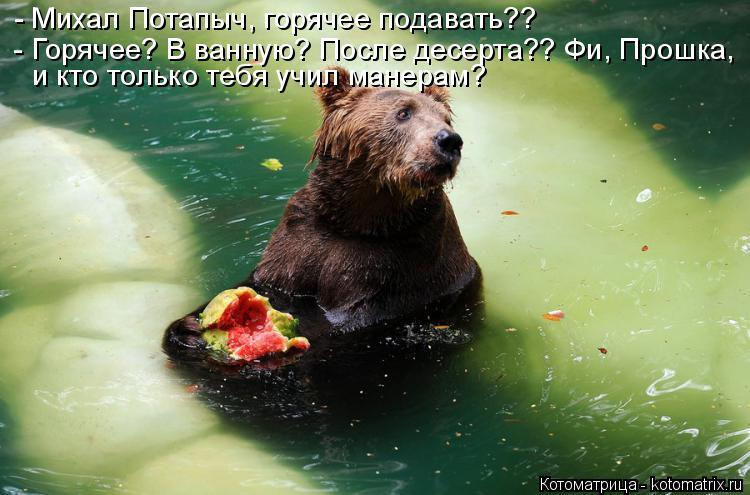 Котоматрица: - Горячее? В ванную? После десерта?? Фи, Прошка, и кто только тебя учил манерам? - Михал Потапыч, горячее подавать??
