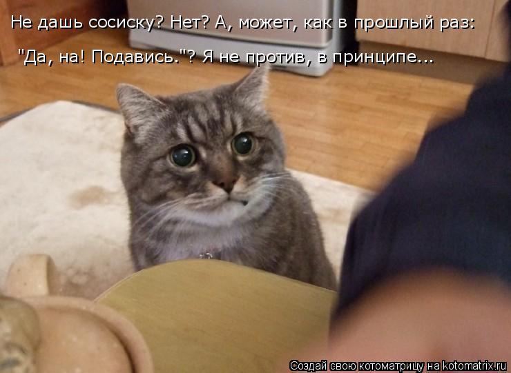 """Котоматрица: Не дашь сосиску? Нет? А, может, как в прошлый раз: """"Да, на! Подавись.""""? Я не против, в принципе..."""