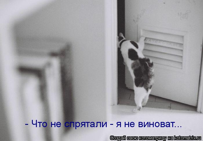 Котоматрица: - Что не спрятали - я не виноват...