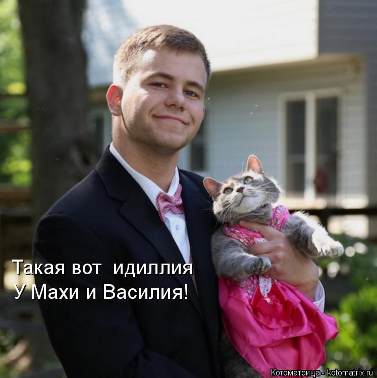 Котоматрица: Такая вот  идиллия У Махи и Василия!