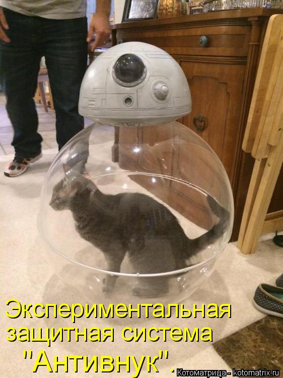 """Котоматрица: Экспериментальная защитная система  """"Антивнук""""."""
