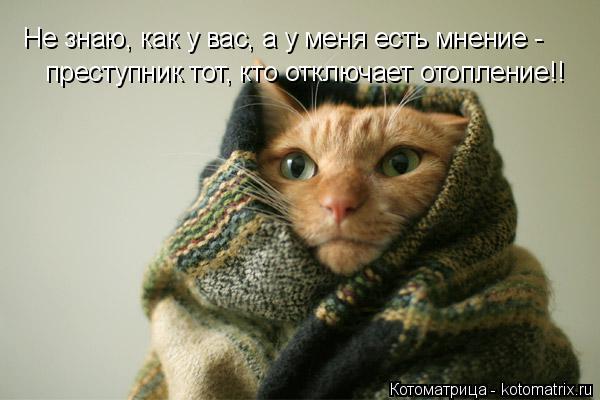 Котоматрица: Не знаю, как у вас, а у меня есть мнение - преступник тот, кто отключает отопление!!