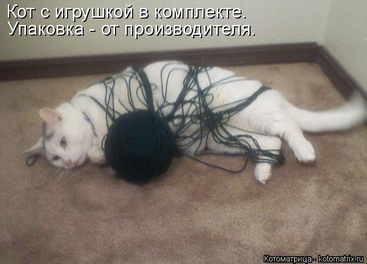 Котоматрица: Кот с игрушкой в комплекте. Упаковка - от производителя.