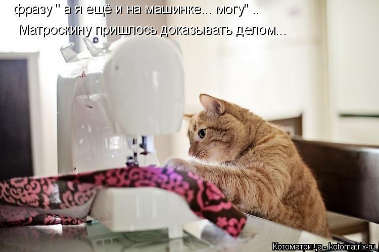 """Котоматрица: фразу """" а я ещё и на машинке... могу"""" .. Матроскину пришлось доказывать делом..."""