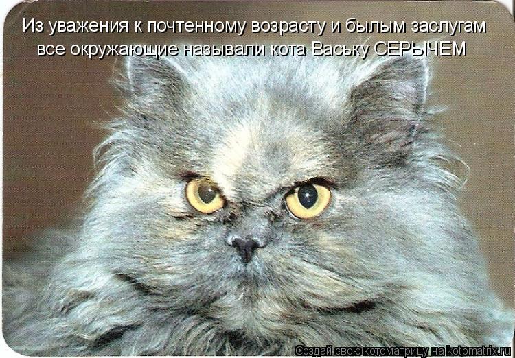 Котоматрица: Из уважения к почтенному возрасту и былым заслугам все окружающие называли кота Ваську СЕРЫЧЕМ