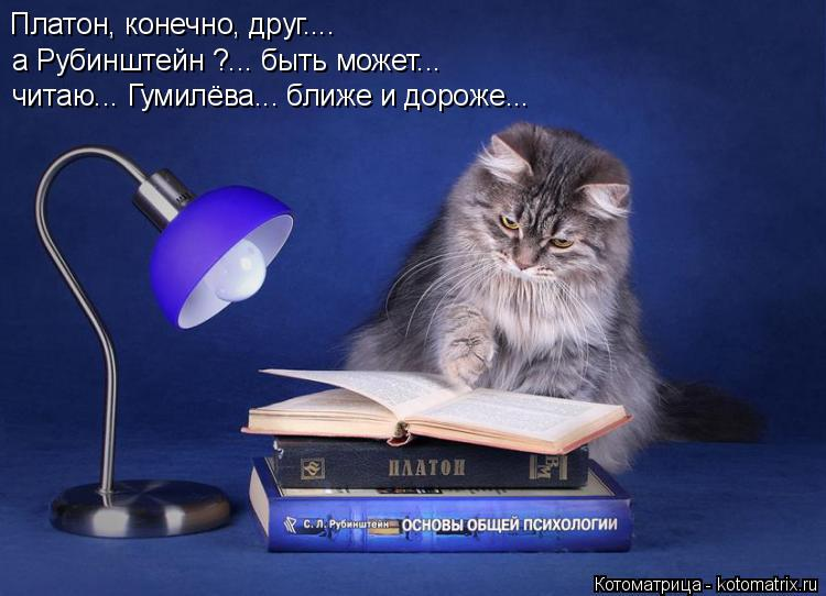 Котоматрица: Платон, конечно, друг.... а Рубинштейн ?... быть может... читаю... Гумилёва... ближе и дороже...