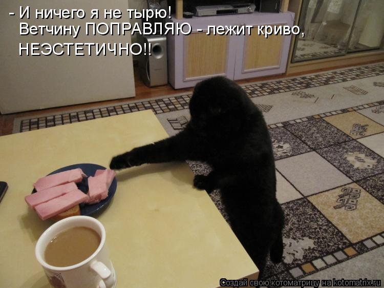 Котоматрица: - И ничего я не тырю!  Ветчину ПОПРАВЛЯЮ - лежит криво,  НЕЭСТЕТИЧНО!!