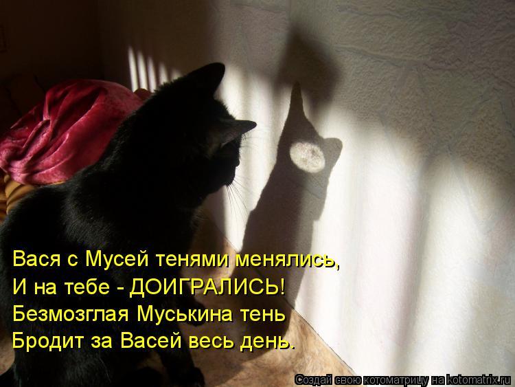 Котоматрица: Вася с Мусей тенями менялись, И на тебе - ДОИГРАЛИСЬ! Безмозглая Муськина тень Бродит за Васей весь день.