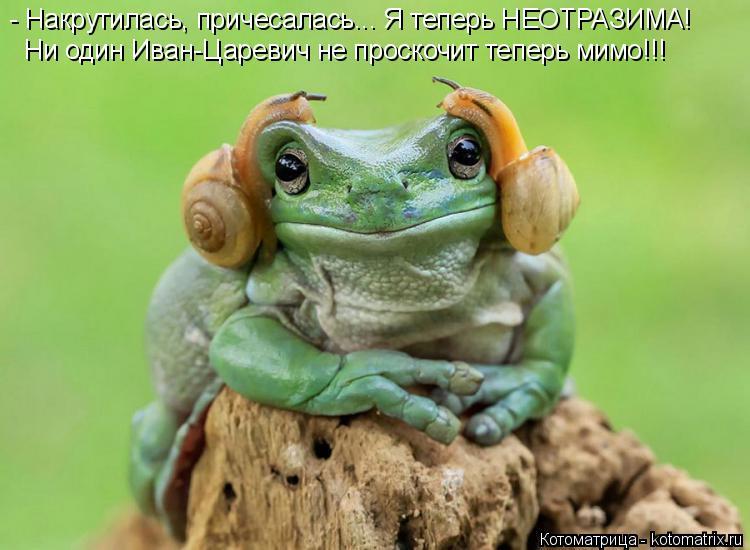 Котоматрица: - Накрутилась, причесалась... Я теперь НЕОТРАЗИМА! Ни один Иван-Царевич не проскочит теперь мимо!!!