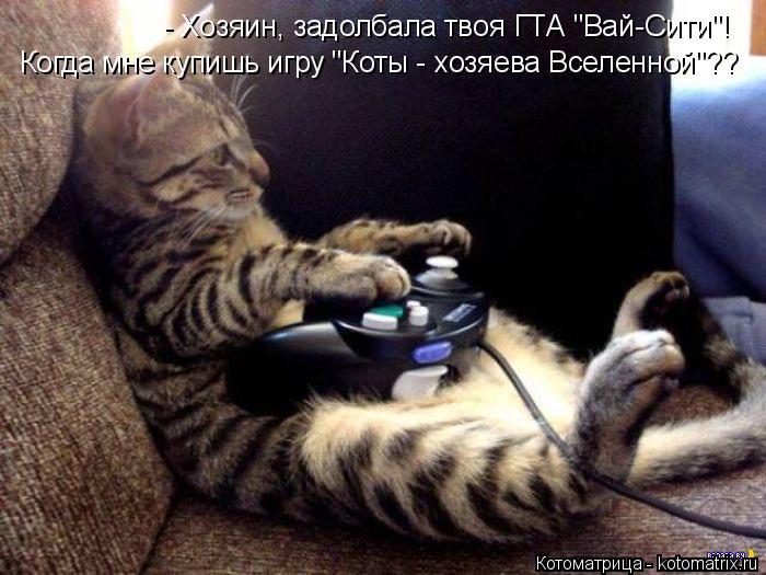 """Котоматрица: Когда мне купишь игру """"Коты - хозяева Вселенной""""?? - Хозяин, задолбала твоя ГТА """"Вай-Сити""""!"""