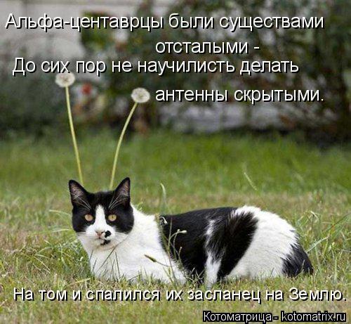 Котоматрица: Альфа-центаврцы были существами отсталыми - До сих пор не научилисть делать  антенны скрытыми. На том и спалился их засланец на Землю.