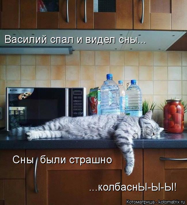 Котоматрица: Василий спал и видел сны... Сны  были страшно  ...колбаснЫ-Ы-Ы!