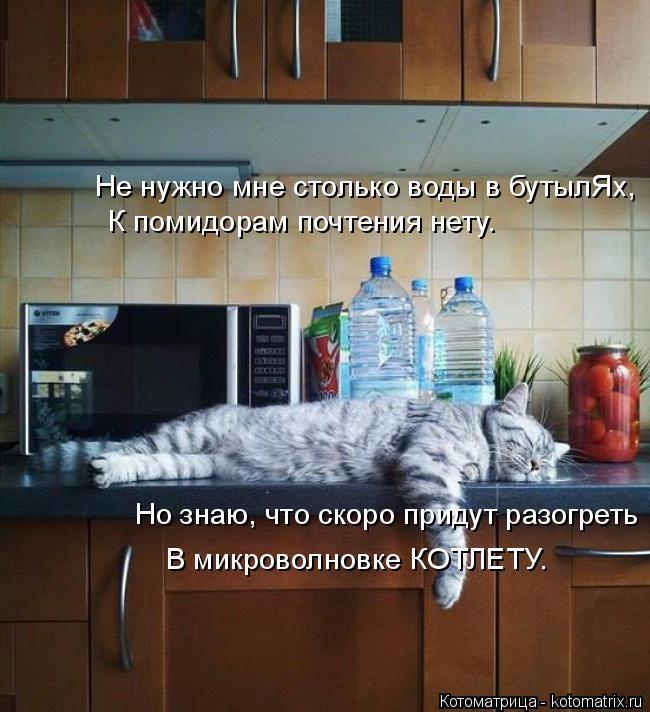 Котоматрица: Не нужно мне столько воды в бутылЯх, К помидорам почтения нету. Но знаю, что скоро придут разогреть В микроволновке КОТЛЕТУ.