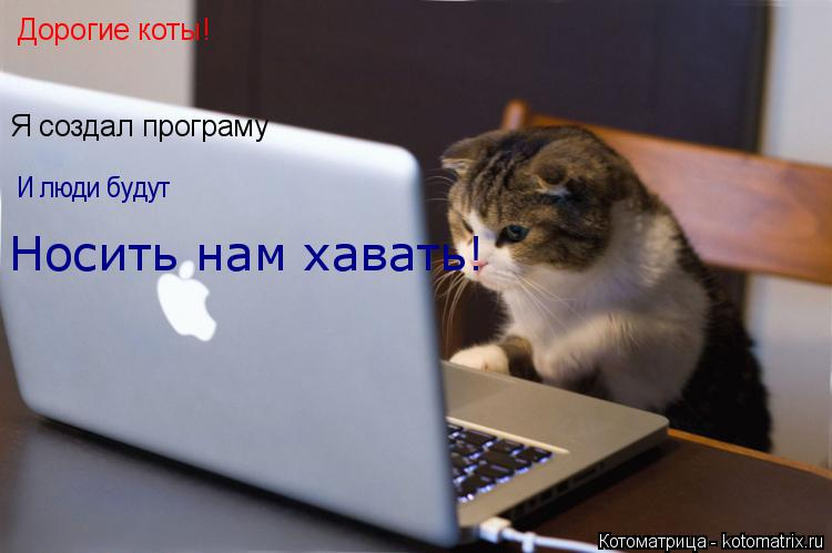Котоматрица: Дорогие коты! Я создал програму И люди будут Носить нам хавать!