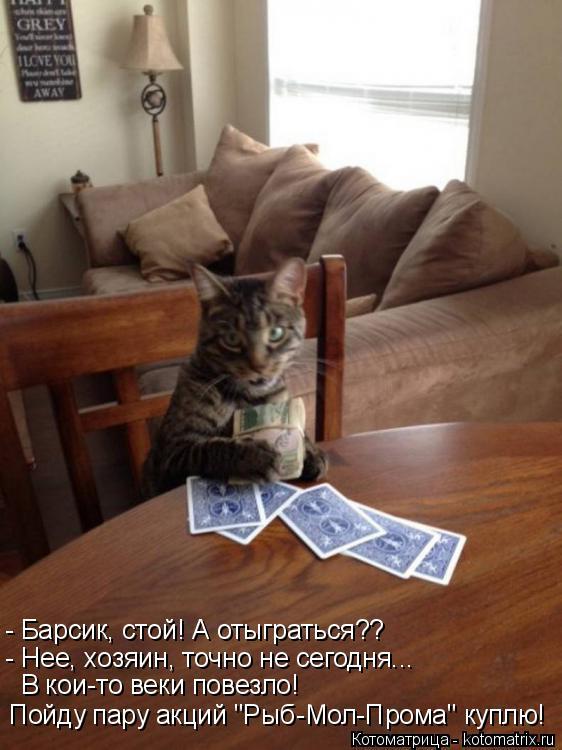 """Котоматрица: - Барсик, стой! А отыграться?? - Нее, хозяин, точно не сегодня...  В кои-то веки повезло!  Пойду пару акций """"Рыб-Мол-Прома"""" куплю!"""