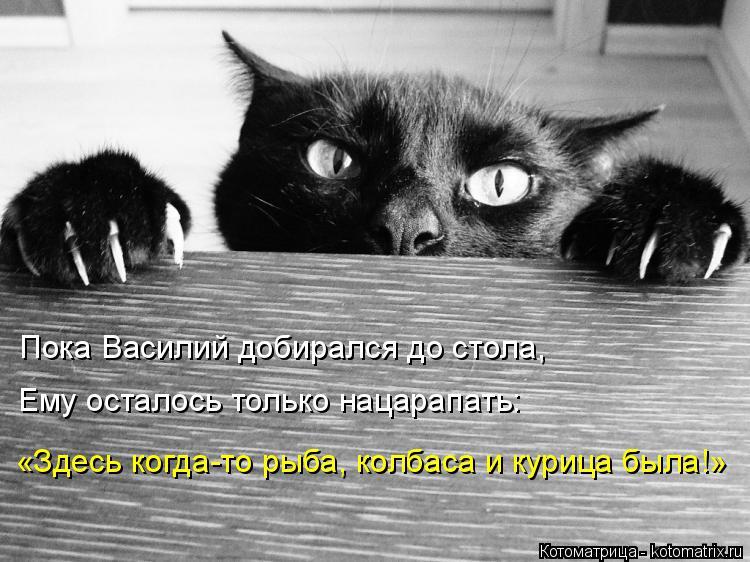 Котоматрица: Пока Василий добирался до стола, Ему осталось только нацарапать: «Здесь когда-то рыба, колбаса и курица была!»