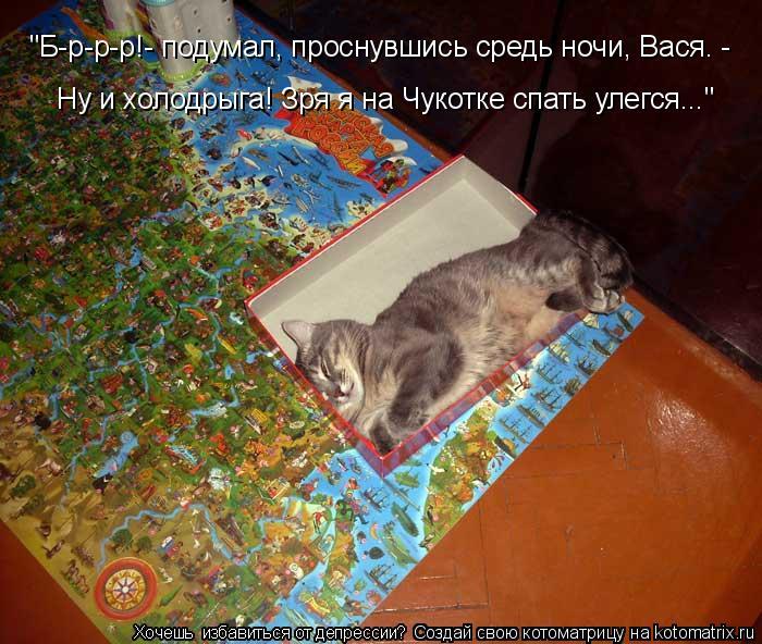 """Котоматрица: Ну и холодрыга! Зря я на Чукотке спать улегся..."""" """"Б-р-р-р!- подумал, проснувшись средь ночи, Вася. -"""